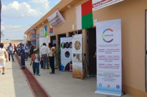 Article : A la rencontre des jeunes entrepreneurs malgaches