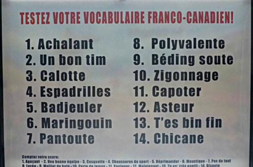 Article : Quand c'est écoeurant, c'est bon… les singularités du français canadien